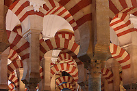 Arches of the hypostyle prayer hall, area built in the 10th century under Al-Mansur, 987-988, in the Cathedral-Great Mosque of Cordoba, in Cordoba, Andalusia, Southern Spain. The hall is filled with rows of columns topped with double arches, a horseshoe arch below a Roman arch, in stripes of red brick and white stone. The first church built here by the Visigoths in the 7th century was split in half by the Moors, becoming half church, half mosque. In 784, the Great Mosque of Cordoba was begun in its place and developed over 200 years, but in 1236 it was converted into a catholic church, with a Renaissance cathedral nave built in the 16th century. The historic centre of Cordoba is listed as a UNESCO World Heritage Site. Picture by Manuel Cohen