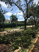 2017 FPL Hurricane Irma damage in Doral, Fla. on Sept. 11, 2017
