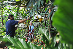 A worker at the Conservatory in Lincoln Park near the entrance to the Lincoln Park Zaoo waters plants as a visitor walks past in Chicago, Illinois on June 20, 2009.