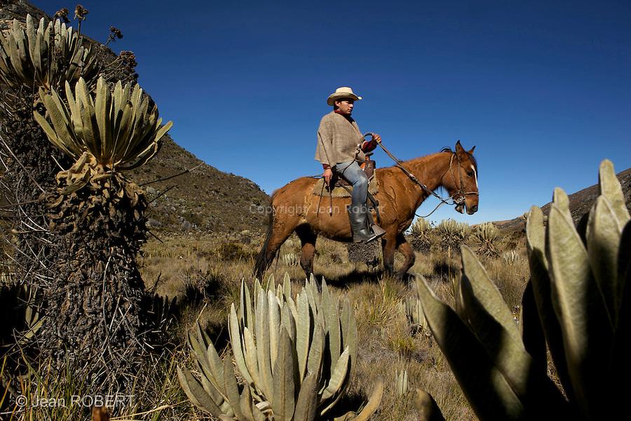 Guillermo a cheval dans le paramo.Sierra del Cocuy