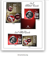 Christmas and Holiday Card Collection