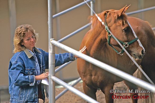 Evelyn Hanggi With Horse