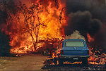 August 18, 1992 Angels Camp, California -- Old Gulch Fire— Houses, outbuildings, and vehicles destroyed by fire near Cave City.  The Old Gulch Fire raged over some 18,000 acres, destroying 42 homes while threatening the Mother Lode communities of Murphys, Sheep Ranch, Avery and Forest Meadows.