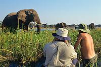 Photographing bull elephant along Zambezi River from canoe.   Photographer Tom Kitchin and Guide Ivan Carter.  Manna Pools National Park, Zimbabwe.