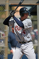 Detroit Tigers minor leaguer Ryan Strieby during Spring Training at the Chain of Lakes Complex on March 17, 2007 in Winter Haven, Florida.  (Mike Janes/Four Seam Images)