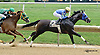 Deadly Card winning at Delaware Park on 9/11/14