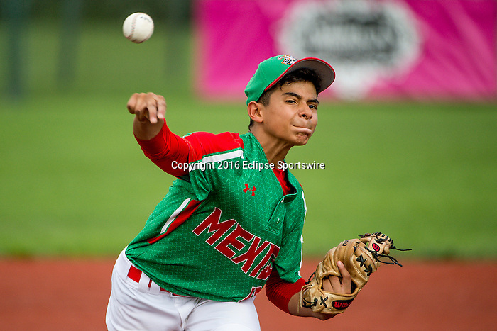 ABERDEEN, MD - AUGUST 02: Angel Durazo #10 of Mexico pitches against Australia in a game between Australia and Mexico during the Cal Ripken World Series at The Ripken Experience Powered by Under Armour on August 2, 2016 in Aberdeen, Maryland. (Photo by Ripken Baseball/Eclipse Sportswire/Getty Images)