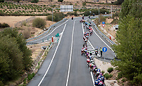 stretched peloton (with wind from the left) on their way to Toledo<br /> <br /> Stage 19: Ávila to Toledo (165km)<br /> La Vuelta 2019<br /> <br /> ©kramon