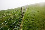Barbed wire fence in fog on chalk downs near Knap Hill, Alton Barnes, Wiltshire, England, UK