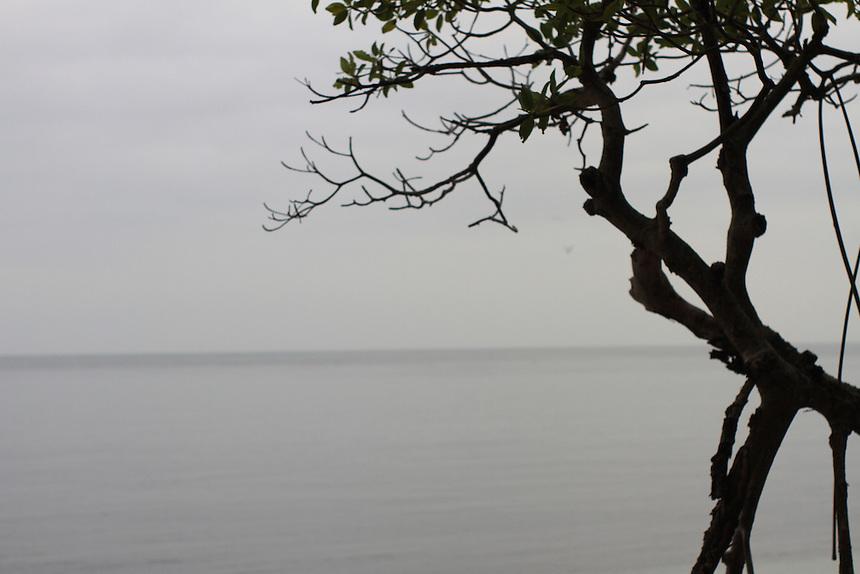 monochromatic grey ocean view