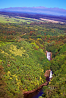 Lovely waterfall and streams wind through the lush greenery of the Hamakua coast. Mauna Kea is in the background.