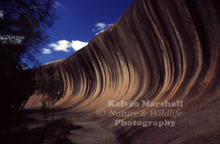 The Wave on Hyden Rock is one of Australia's most famous landforms, a giant surf wave of multicoloured granite about to crash onto the bush below. Stand under it and feel rock power from over 2,700 million years ago, before dinosaurs roamed the earth!
