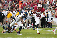 Stanford, CA -- November 23, 2013:  Stanford's Kelsey Young rushes for a touchdown during a game against Cal at Stanford Stadium. Stanford defeated Cal 63-13.