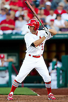 Jake Shaffer (31) of the Springfield Cardinals at bat during a game against the St. Louis Cardinals at Hammons Field on April 2, 2012 in Springfield, Missouri. (David Welker/Four Seam Images)