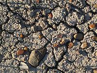 Stones and mud along the Missouri River, Montana.