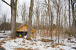 Maple sugar shack in spring, Lanark County, Ontario, Canada