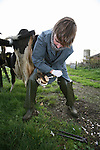Veterinarian examining the foot of a cow on a dairy farm, Netherlands