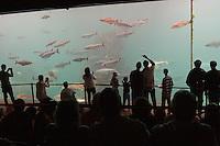 Besucher in Meeresaquarium, marines Aquarium mit Meeresfischen, Besucher blicken in riesiges Becken mit großen Fischen, Schauaquarium, Alesund, Norwegen