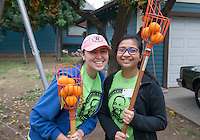 Food Forward, Pasadena. Occidental College students, staff and alumni volunteer all over the Los Angeles area as part of MLK Day of Service, organized by the Office of Community Engagement, on Saturday, Jan. 23, 2016.<br /> (Photo by Marc Campos, Occidental College Photographer)