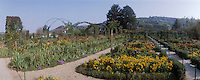 Europe/France/Normandie/Haute-Normandie/27/Eure/Giverny : Le jardin de la maison de Monet