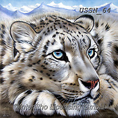Sandi, REALISTIC ANIMALS, REALISTISCHE TIERE, ANIMALES REALISTICOS, paintings+++++snowleopardsdream,USSN64,#a#, EVERYDAY ,puzzles