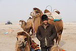 "Asien CHINA Provinz Xinjiang, uigurischer Kameltreiber am Dawakun See in Taklamakan Wueste im Winter  | .Asia CHINA province Xinjiang , uighur camel driver at Dawakun lake in Taklamakan desert in winter season .| [ copyright (c) Joerg Boethling / agenda , Veroeffentlichung nur gegen Honorar und Belegexemplar an / publication only with royalties and copy to:  agenda PG   Rothestr. 66   Germany D-22765 Hamburg   ph. ++49 40 391 907 14   e-mail: boethling@agenda-fototext.de   www.agenda-fototext.de   Bank: Hamburger Sparkasse  BLZ 200 505 50  Kto. 1281 120 178   IBAN: DE96 2005 0550 1281 1201 78   BIC: ""HASPDEHH"" ,  WEITERE MOTIVE ZU DIESEM THEMA SIND VORHANDEN!! MORE PICTURES ON THIS SUBJECT AVAILABLE!! ] [#0,26,121#]"