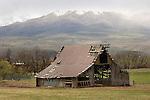 Barn in Spring, Richland, Oregon