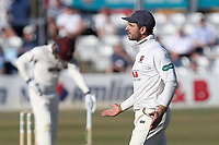 Essex skipper Ryan ten Doeschate protests to the umpire after an appeal for the wicket of Lewis Greogry is turned down during Essex CCC vs Somerset CCC, Specsavers County Championship Division 1 Cricket at The Cloudfm County Ground on 27th June 2018