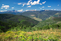The Sawatch Range with rabbitbrush and clouds. Near Vail Colorado