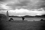 Ireland - County Clare <br /> Lough Derg - Woodland