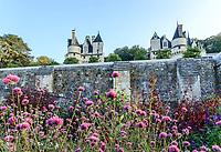 France, Indre-et-Loire (37), Rigny-Ussé, château et jardin d'Ussé en octobre, la terrasse inférieure et les plates-bandes de plantes annuelles, Gomphrena globosa au premier plan