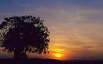 African Sunrise, Amboseli National Park, Kenya.