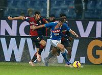 Fabian Ruiz of Napoli  during  Genoa -   Napoli Stadio Luigi Ferraris, Genoa, Italy; Serie A football 10th November 2018