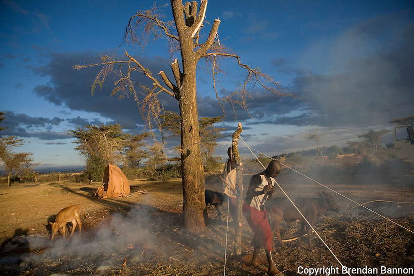 People building tenst for shelter at a camp for internal refugees in Endebess, Kenya in 2008..Most people in the camp said that their homes were attacked and burnt forcing them to flee their homes. ...