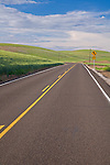 Whitman County, WA<br /> A county road winds through the Palouse hills