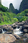 The lovely, deep valley of 'Iao features the 'Iao Needle, a natural rock pinnacle presiding over the 'Iao stream and surrounded by the walls of the Pu'u Kukui Crater. Once used as a natural altar, the 2,250-foot stone pillar covered in green, is a basaltic core that has survived eons of swirling water..'Iao Valley is the site of one of the most famous battles that occurred in 1790 and changed Hawaii history forever when King Kamehameha I destroyed the Maui army in an effort to unite the Hawaiian Islands...