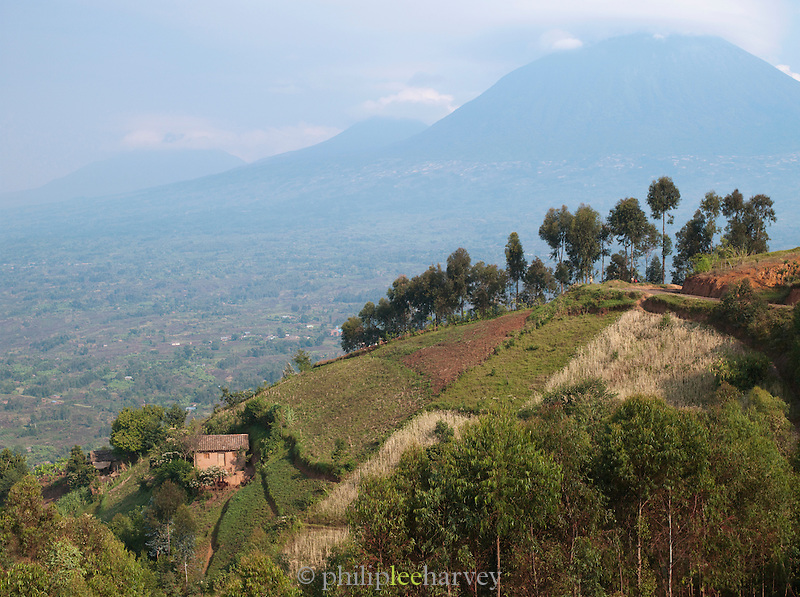 A small hilltop village in Parc National des Volcans, Rwanda
