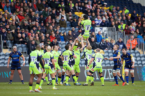 20.02.2016. Sixways Stadium, Worcester, England. Aviva Premiership. Worcester Warriors versus Sale Sharks. Sale Sharks number 8 Josh Beaumont wins a line out.