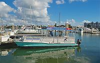 EUS- Dolphin Explorer Cruise, Naples FL 12 13