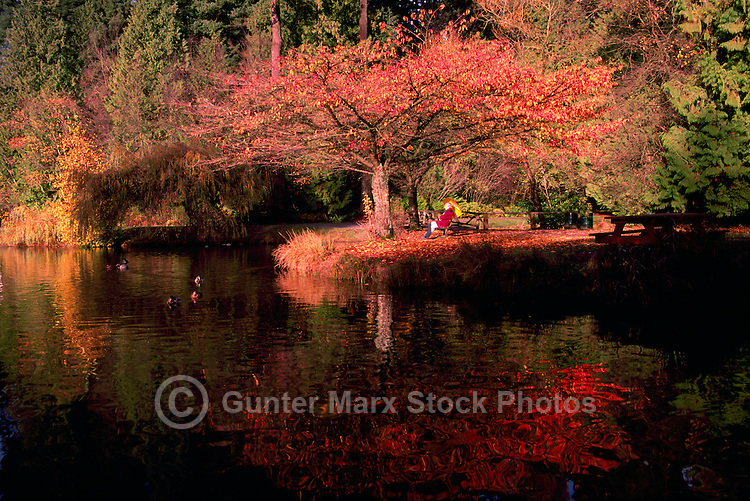 Central Park, Burnaby, BC, British Columbia, Canada - Autumn Reflections (Model Released)