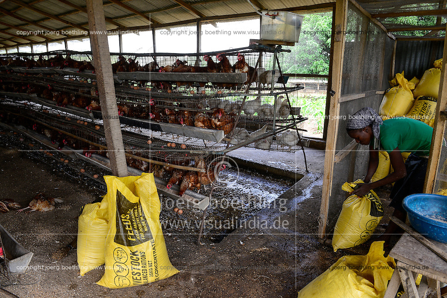 NIGERIA, Oyo State, Ibadan, village Ilora, egg layer hen keeping in cages, fodder for feeding / Eierproduktion, Legehennenhaltung in Kaefigen, Tierfutter