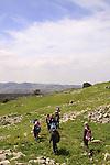 Israel, Upper Galilee, hiking at Hurvat Beck on Mount MeronMount Meron