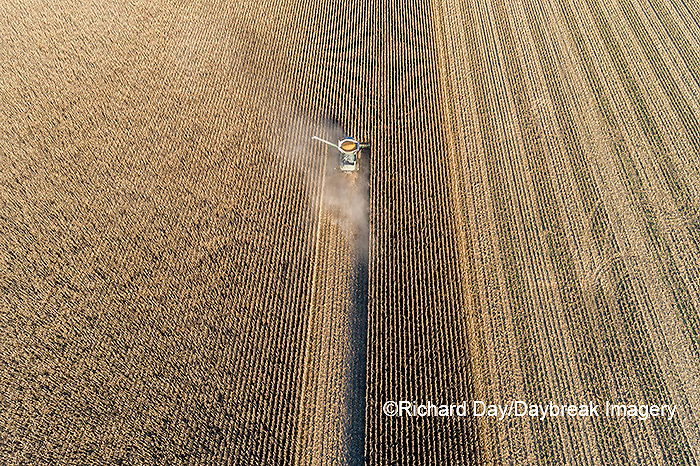63801-13013 Harvesting corn in fall-aerial  Marion Co. IL