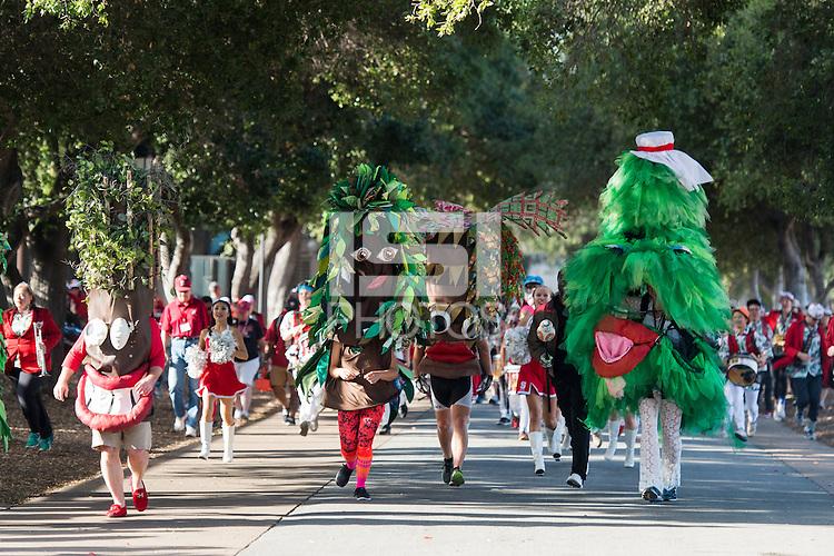 Stanford, CA -- October 22, 2016. Stanford Cardinal vs University of Colorado. Final score Colorado 10, Stanford 5.