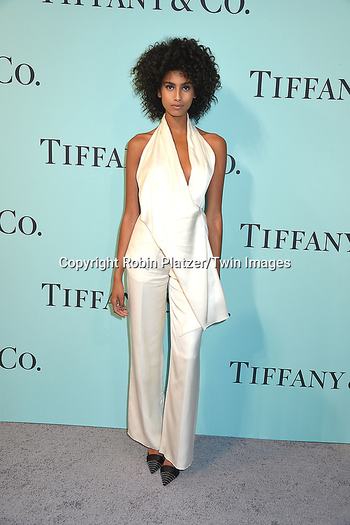 Imaan Hammam attends the Tiffany &amp; Co 2017 Blue Book Collection on April 21, 2017 at St Ann's Warehouse in Brooklyn, New York, USA.<br /> <br /> photo by Robin Platzer/Twin Images<br />  <br /> phone number 212-935-0770