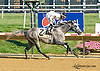 Uptown Dannys Boy winning at Delaware Park on 8/15/15