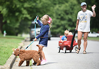 Blakely Weddle, 5, keeps Nash, the family goldendoodle, walking in the correct direction Monday, July 27, 2020, as they walk with her mother Melissa pulling her two brothers Brooks, 3, and Brigham, 2, in a wagon in their neighborhood in Springdale. The family walks often with the children choosing to walk or ride as they move on their route. Check out nwaonline.com/200728Daily/ and nwadg.com/photos for a photo gallery.<br /> (NWA Democrat-Gazette/David Gottschalk)