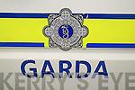 Garda Logo Gardai Logos Crime Scene Logo