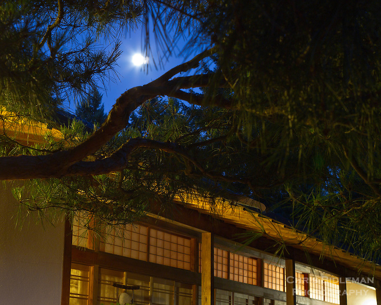 A full moon is peaking through frame formed by pine trees branches over the Pavilion in low blue light of twilight in the Portland Japanese Garden