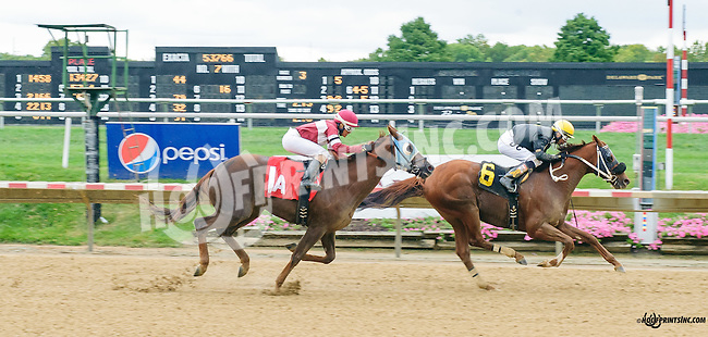 Tuckers Point winning at Delaware Park on 9/30/15